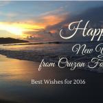 Cruzan Foodie New Years Greetings
